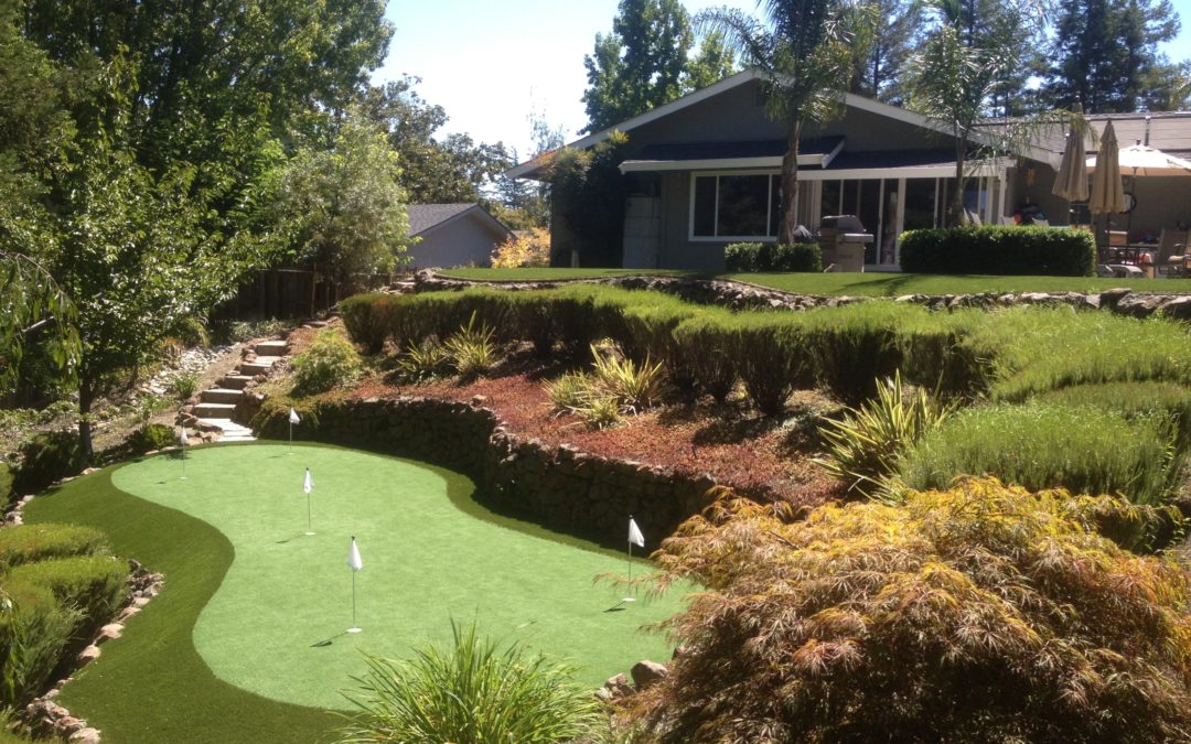 NewGrass and Xeriscaping Go Hand In Hand
