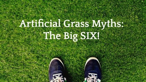 Top 6 Myths Concerning Synthetic Grass